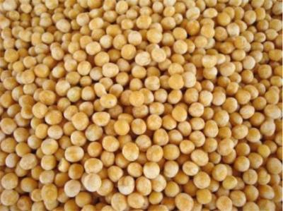Фермент для расщепления белковых компонентов кормов